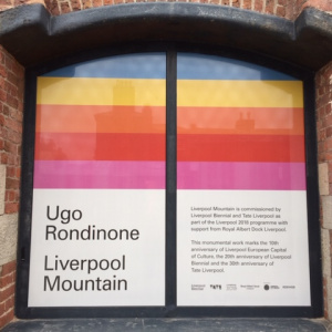Art Exhibition Promotional Graphics | Tate Liverpool